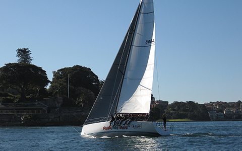 Thumbnail image of the boat design - Sydney 43 GTS